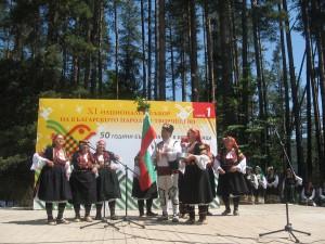 Festival1 (1)